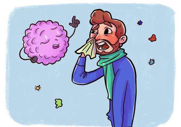 Врач с юмором рассказал, как работает наш иммунитет