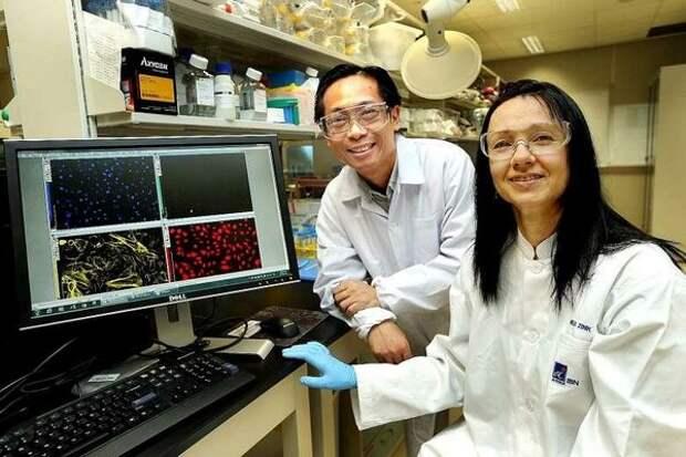Создание ИИ и сверхмощных лазеров: ученые России и Китая объединились