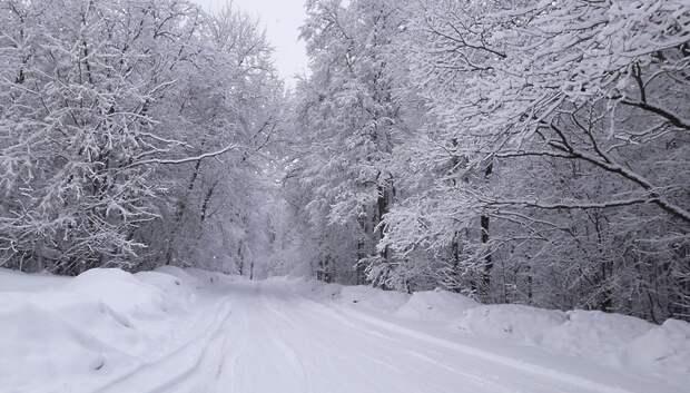 В Московском регионе зафиксировали снежный покров до 4 сантиметров