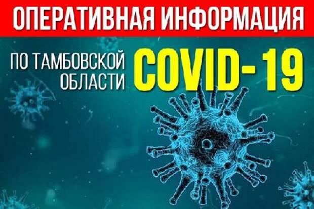 Суточная заболеваемость коронавирусом в Тамбовской области продолжает снижаться