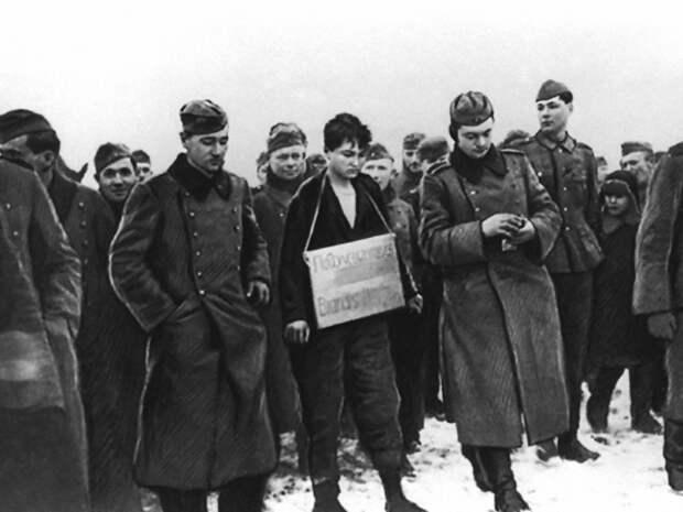 Настоящая история: почему жители деревни Петрищево радовались казни Зои Космодемьянской
