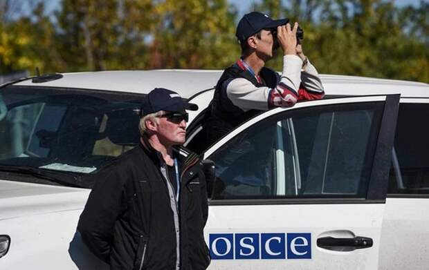 Принуждение к прозрению: под давлением ЛДНР ОБСЕ может стать жёстче к Украине