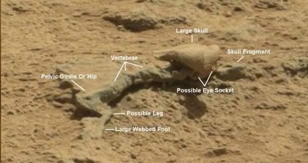 Последние марсианские находки виртуальных археологов