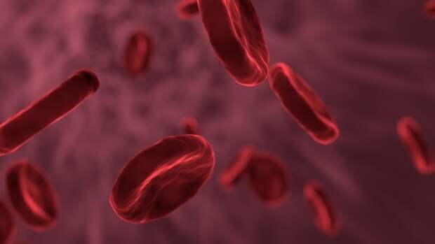 Врач-кардиолог Ашихмин объяснил, как избежать образования тромбов