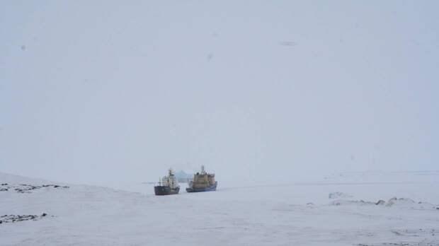 «Роснефть» впервые в истории пробурила шесть скважин в Арктике