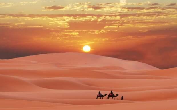 8 причин посетить Сахару