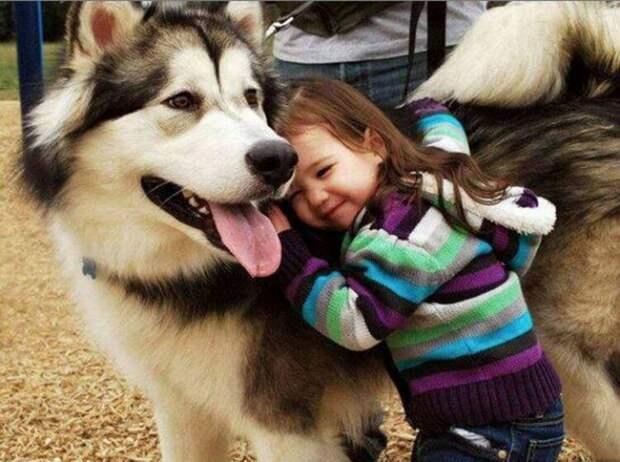 Фотографии детей и животных — именно так выглядит счастье