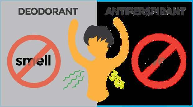 Дезодорант – от запаха, антиперспирант – от пота.