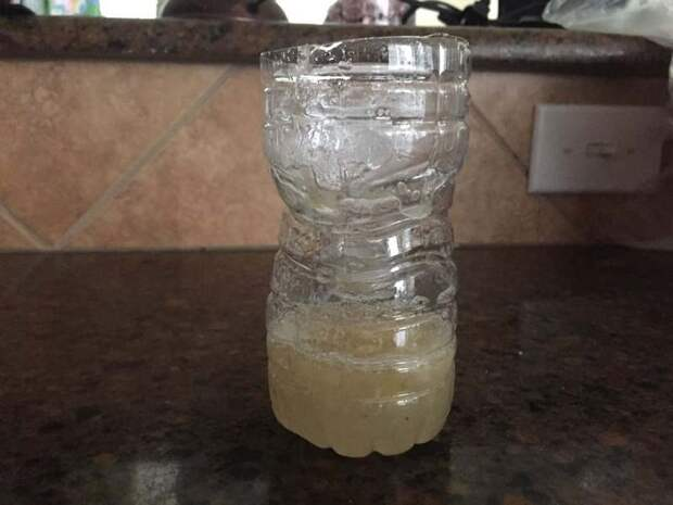 Потом горлышком вниз положите верхнюю часть бутылки (без крышки) в нижнюю (смотрите фото) бутылка, гениально, идея, ловушка, муха, сделай сам