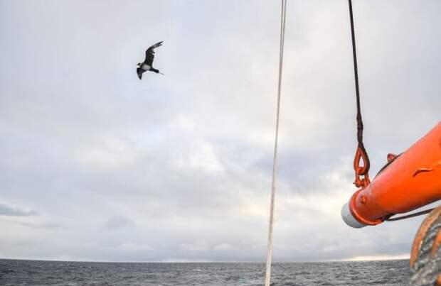 Число рыбаков, погибших во время шторма под Мурманском, выросло до пяти