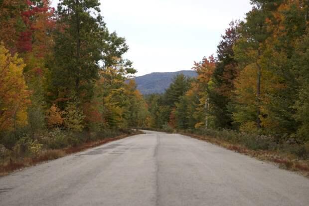 Дело было вЛатвии: случай на маленькой дороге