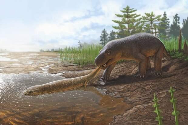 Горыныч (Gorynychus sundyrensis) поймал крупного двинозавра. /Иллюстрация А. Атучин