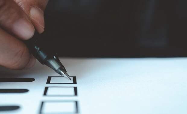 Совет Федерации займется мониторингом выборов