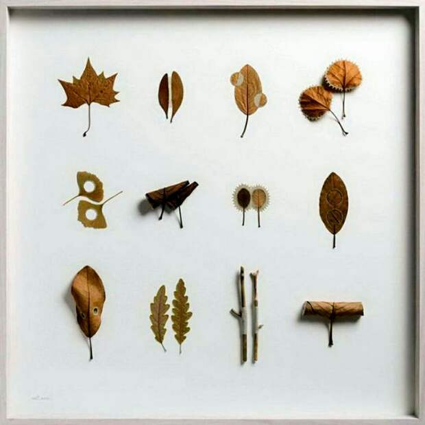 Осень. Листья. Творчество.