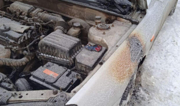 Полицейские в Оренбурге начали проверку по факту поджога автомобиля блогера