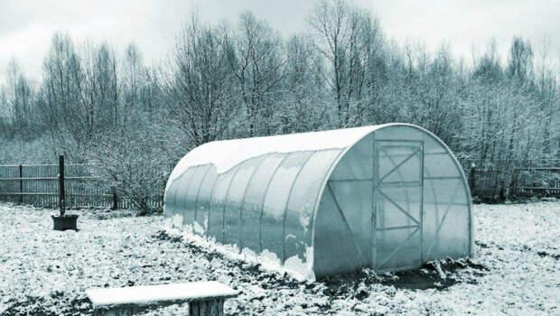 Согрели теплицу на даче зимой и растим зелень. Инфракрасных обогревателей достаточно и затрат на свет почти нет