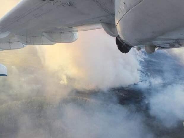 Авиаразведка выявила 11 пожаров на площади свыше 3 млн кв.м. в лесах Забайкалья