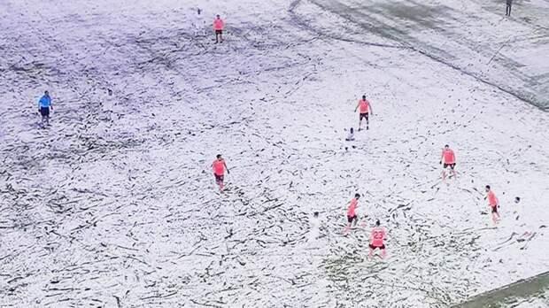 Футболисты «Сивасспора» вышли в белой форме на заснеженное поле в матче чемпионата Турции. Их почти не было видно