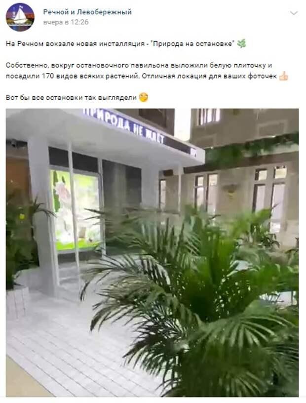 Инсталляция «Природа на остановке» открылась на Северном речном вокзале