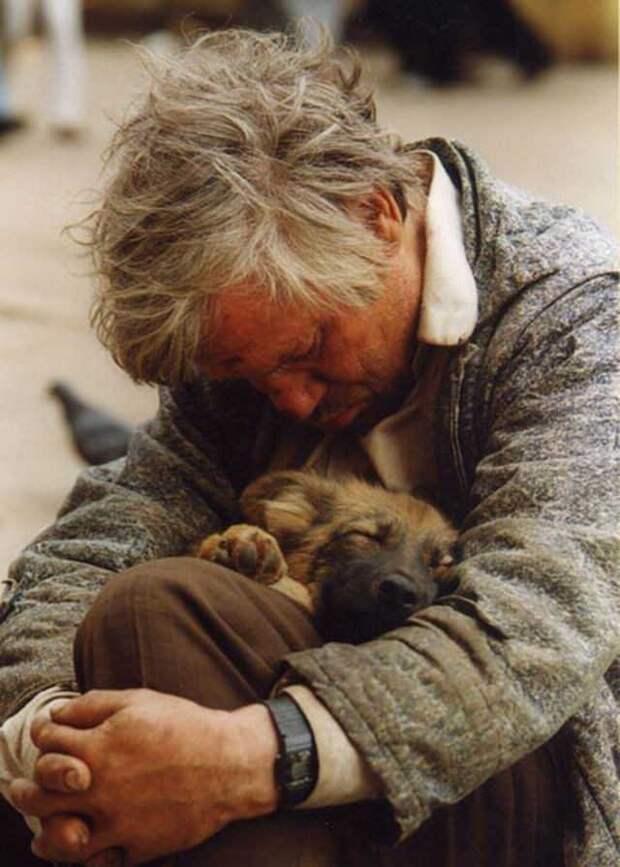 Кузя и Трошка бездомные, дружба, животные, жизнь, рассказ
