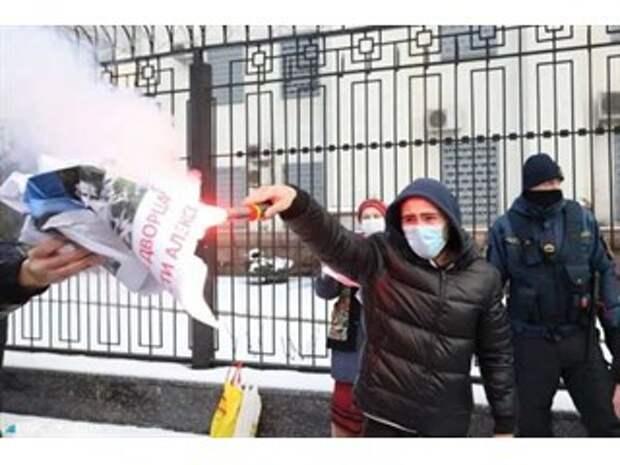 Киевские приключения хомяков Навального