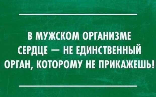 Женский юмор в картинках. Нежный юмор. Подборка milayaya-umor-milayaya-umor-22140224072020-9 картинка milayaya-umor-22140224072020-9