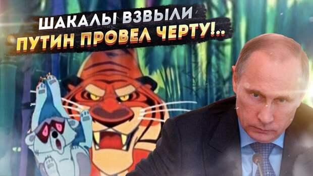 Польский аналитик: После послания Путина Польшу должно успокаивать то, что главной целью Маугли был Шерхан, а не Табаки
