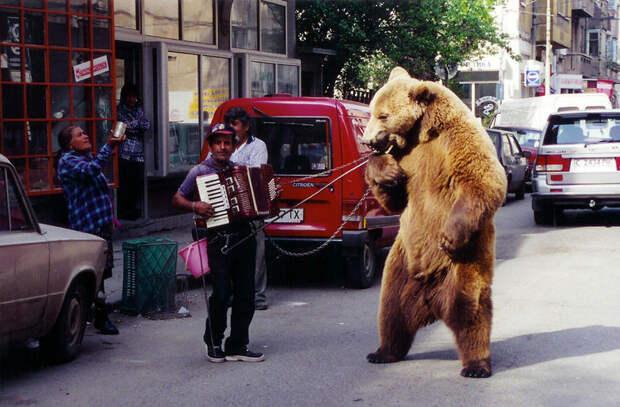Собираетесь в Болгарию? Вот чего нельзя делать в этой стране!