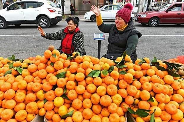 Тоска оранжевая. Почему до россиян не доходят дешевые абхазские мандарины?