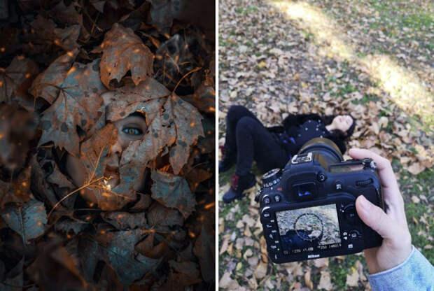 Novate.ru рассказывает, как управлять листьями через экран.   Фото: Wprost.