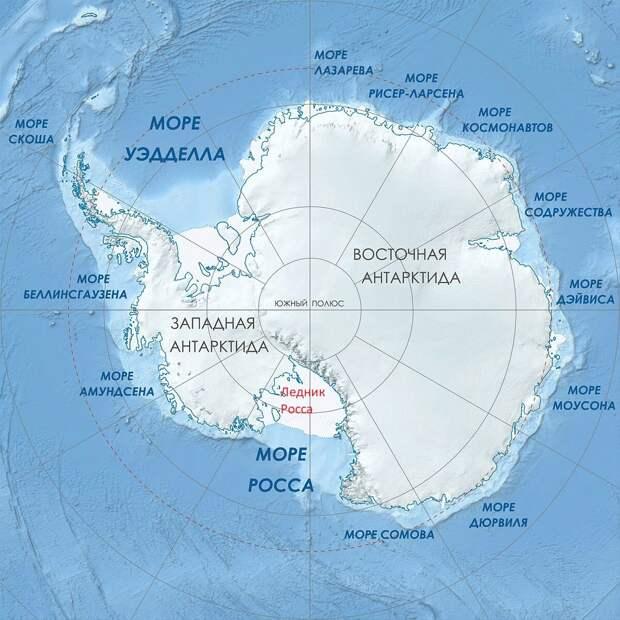 """Великая подводная Стена, или """"древняя каменная структура"""", разделяющая Антарктиду, """"как огромная спица, идущая от центра колеса"""" - проходит на этой карте от центра вниз, по центральному, 180-му меридиану."""
