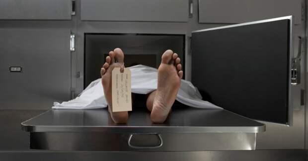 Американские «брокеры тел»: как работал бизнес намертвечине вАризоне