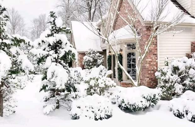 Зимнее снегозадержание