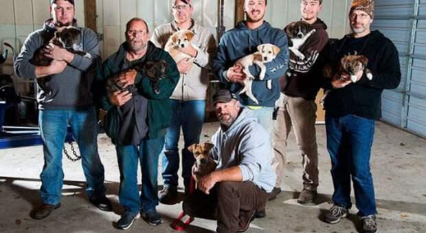 Чтобы спасти своих щенков, бродячая собака заглянула на пикник и изменила жизнь восьмерых мужчин
