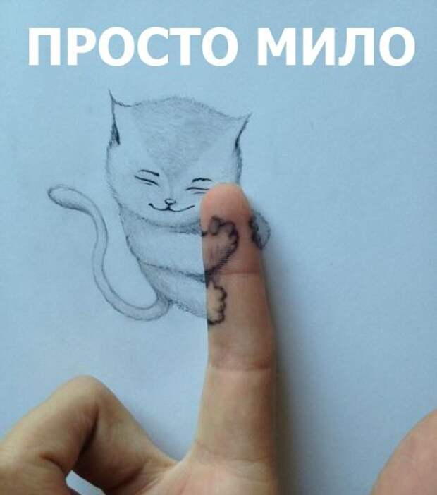Веселые и забавные картинки с надписями со смыслом