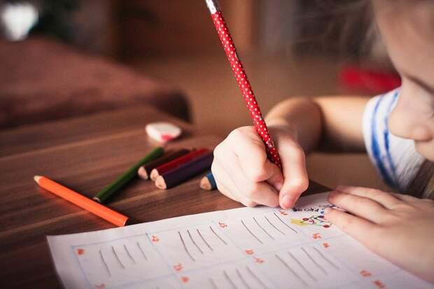 Ребенок, Играть, Исследование, Цвет, Узнать, Знаний