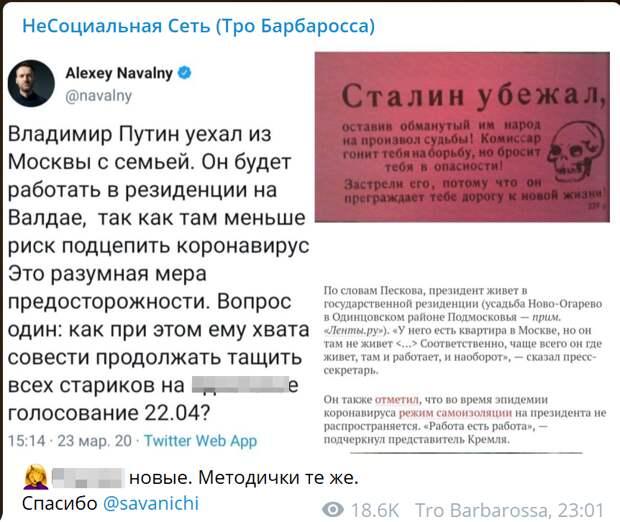 """""""Путин уехал из Москвы с семьёй"""": """"Сенсацию"""" от Навального сравнили с немецкой листовкой"""