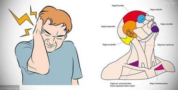 Избавиться от головной боли и стресса за 30 секунд? Возможно