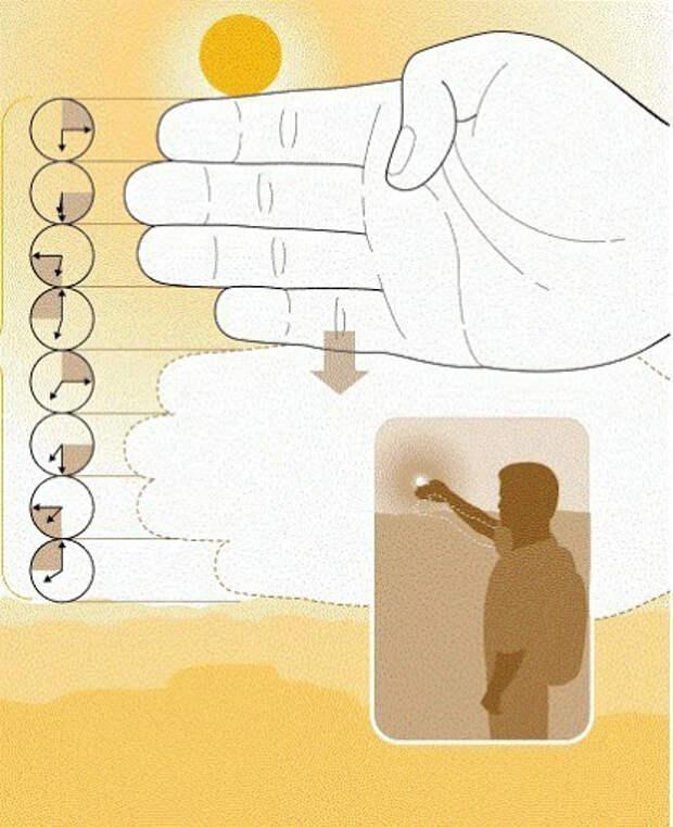 Подсчет времени до заката без часов: вытянутая рука позволяет точно понять время