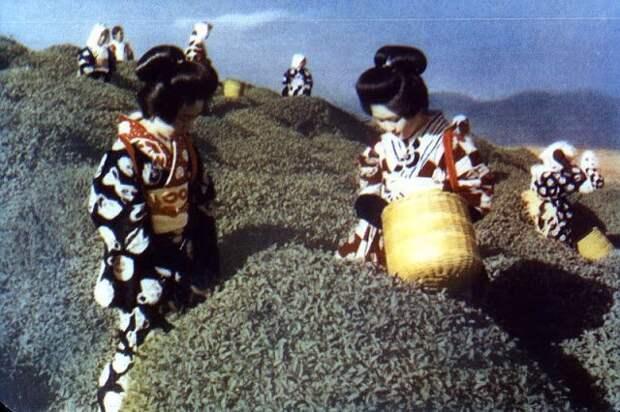 Цветные фотографии Японии начала 1950‑х