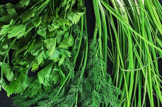 Снадобья с огорода. Какие болезни лечат зелёные овощи?