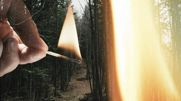 Тешил эго: пожарный-доброволец сам поджег лес, чтобы прославиться