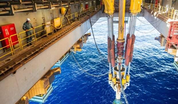«Газпром нефть» иНОВАТЭК будут совместно разрабатывать участок нашельфе Арктики