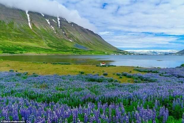 16. Исафьордюр, Исландия красивые места, места, мир, путешествия, рейтинг, страны, туризм, фото