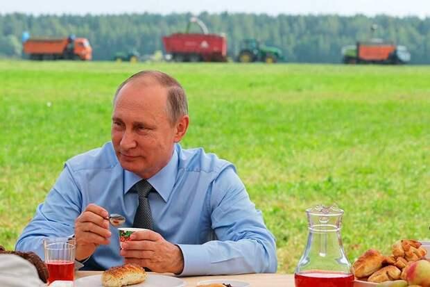 Путин умолчал, что успехи в поставках зерна на экспорт являются следствием чудовищных провалов в животноводстве