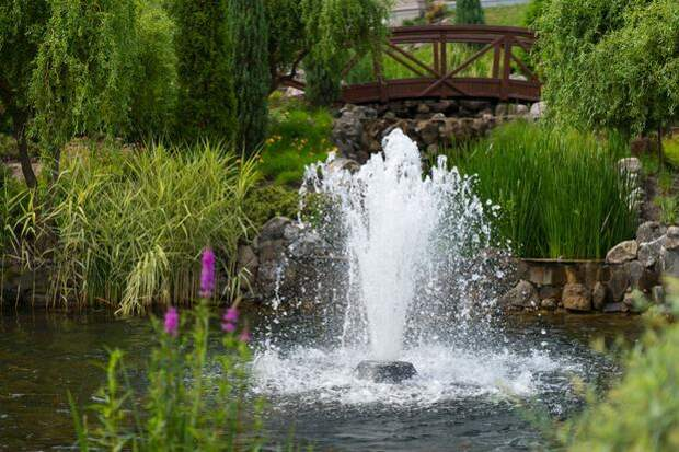 Фонтаны садовые: как установить фонтан в саду