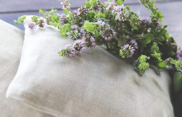 Если зашить в подушку эти три травы, вы попрощаетесь с бессонницей