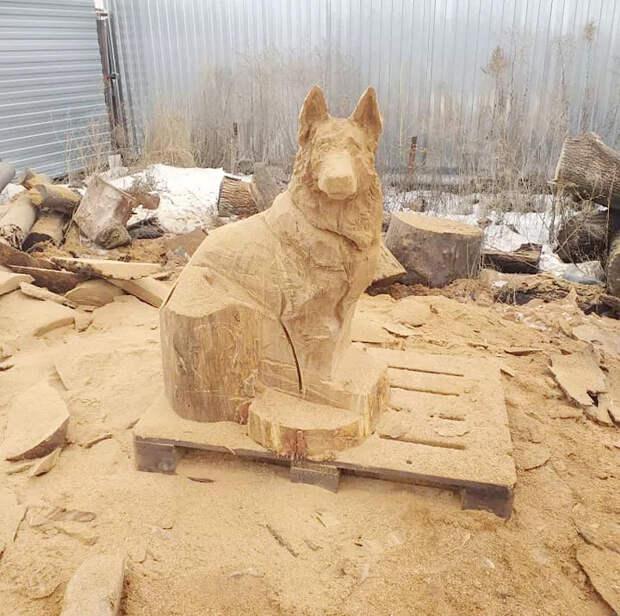 Воронежец бензопилой сделал из куска дерева «живую собаку»