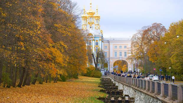 Сады и парки Санкт-Петербурга открыли после шторма