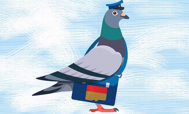Как почтовый голубь вернул 194 человека с того света